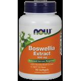 Boswellia Extract (500mg 65%)