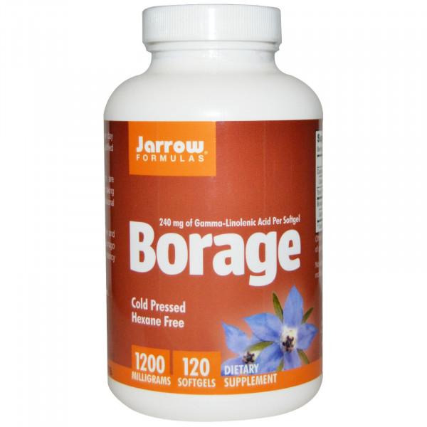 Borage GLA-240