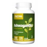 Ashwagandha KSM-66 300mg 5%