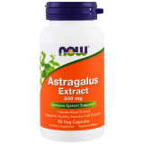 Astragalus Extract 500mg (standarized)